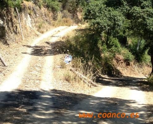 caminos de coaching www.coanco.es